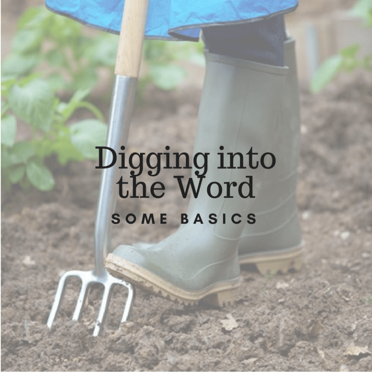 Digging Into the Word – Some Basics