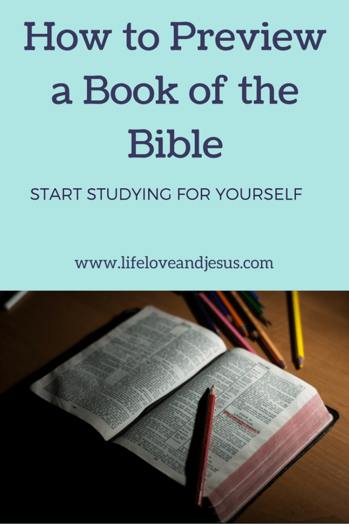how to do a bible study book preview