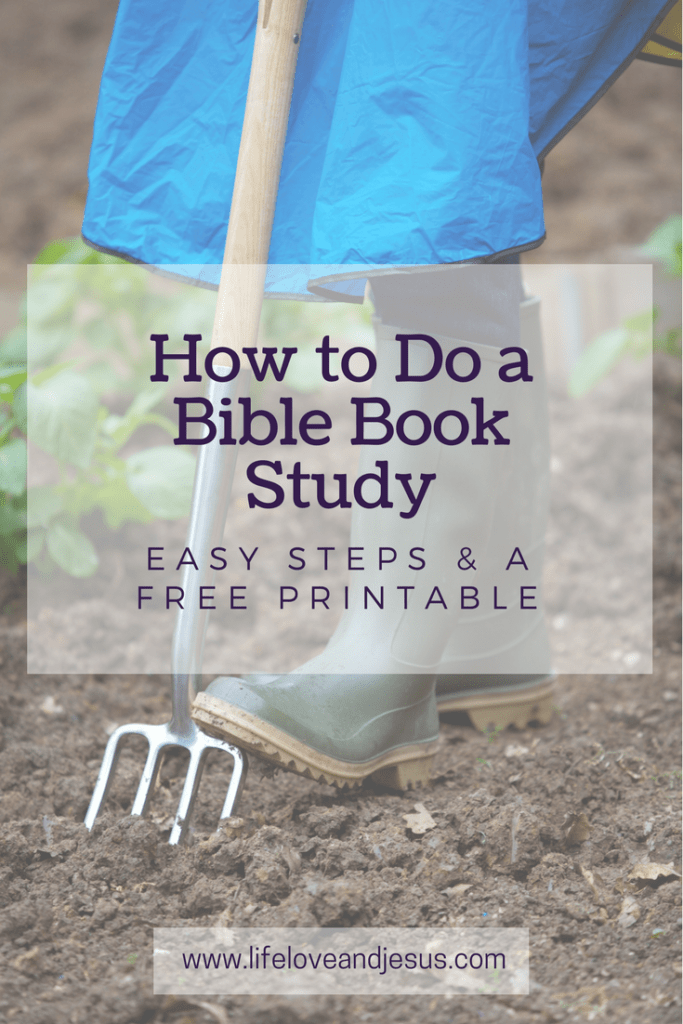 how to do a Bible book study