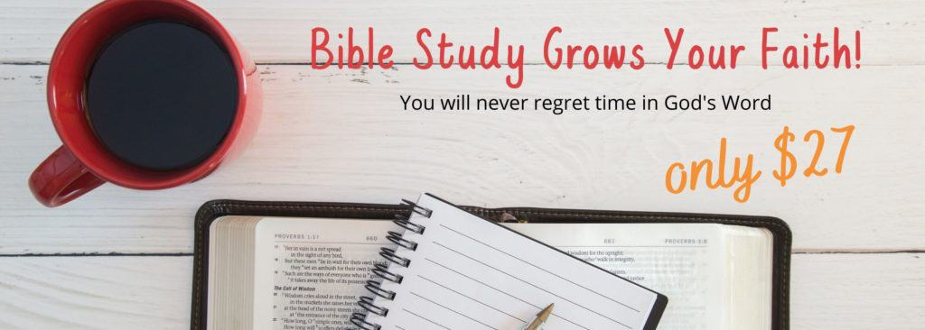 bible study workbook