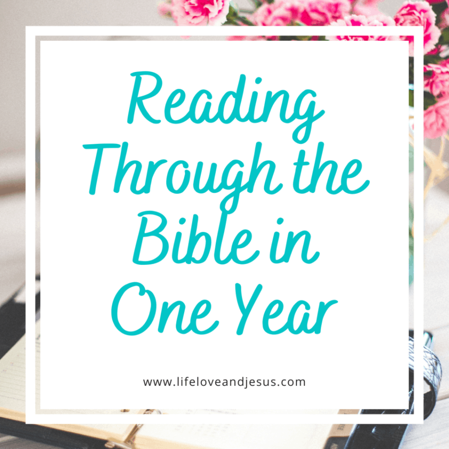 read through the Bible in a year