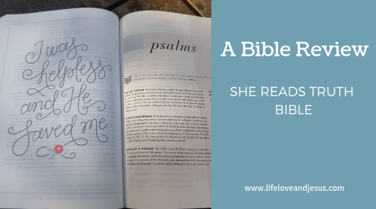 She Reads Truth Bible | A Review