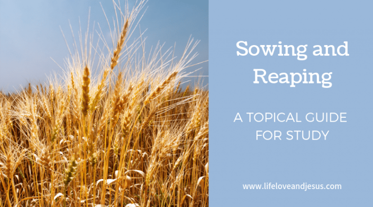 Sowing and Reaping | Monthly Study Topic