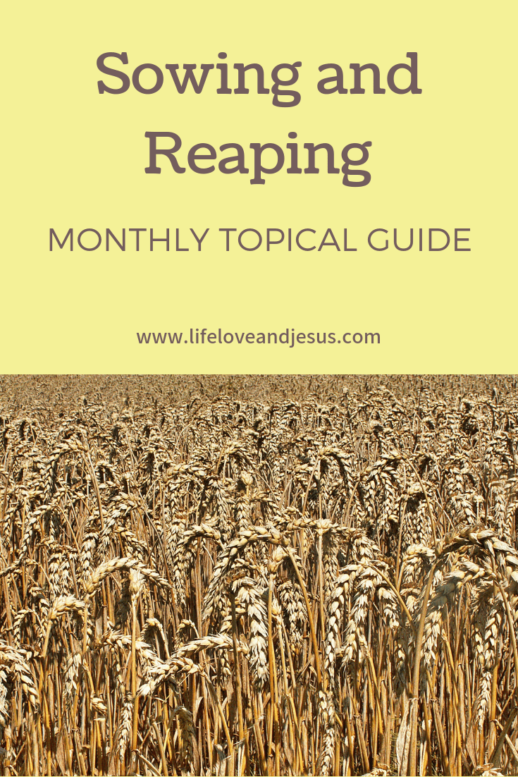 sowing and reaping are Biblical principles by which we can guide our lives. Use this monthly study guide to dig deeper into the topic.